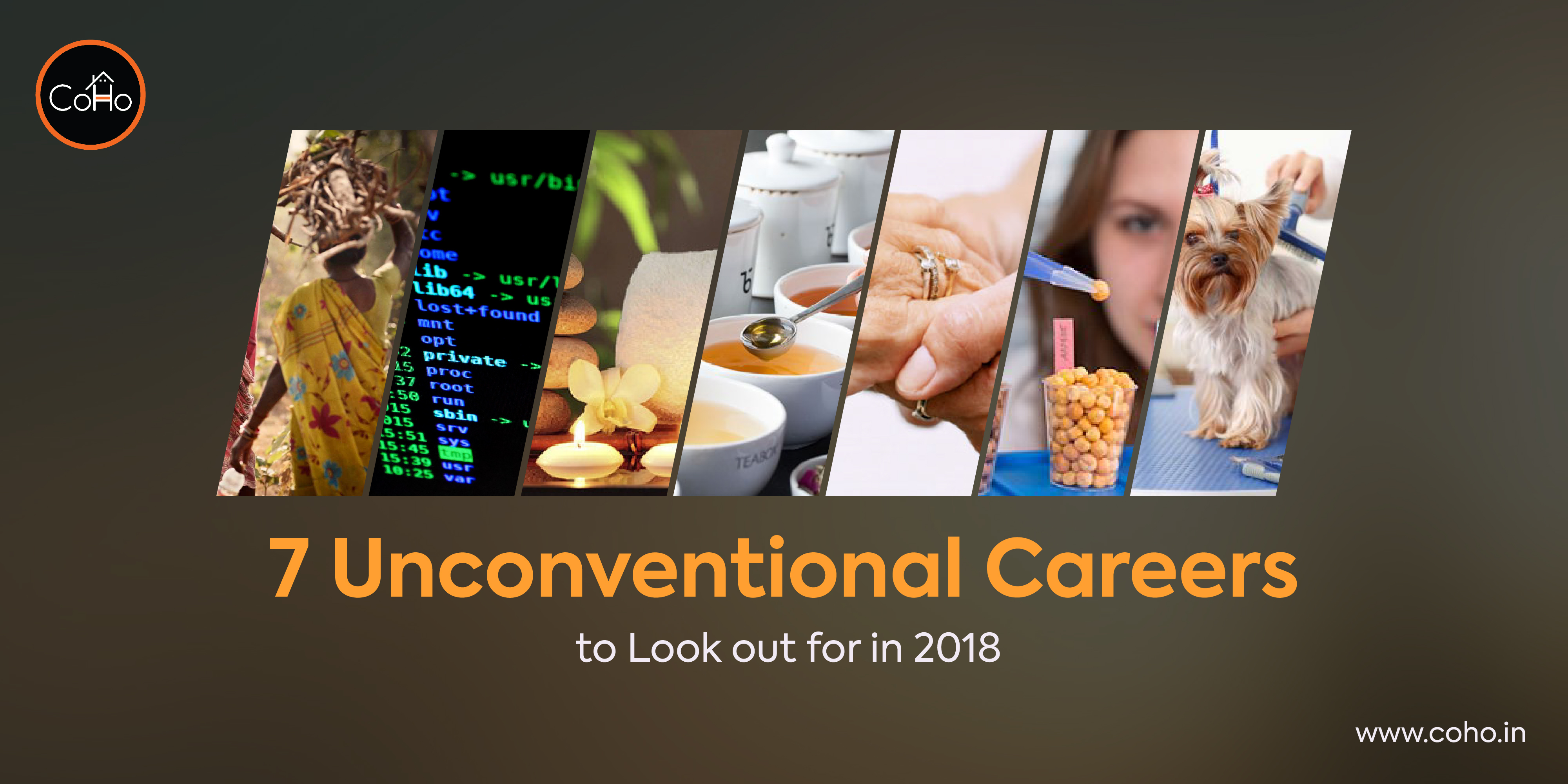 7 Unconventional Careers to Look out for in 2018